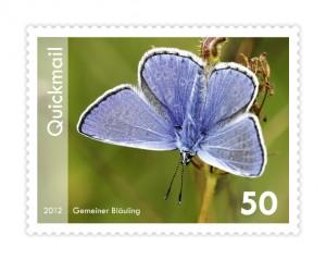 QM-2-2012-Gemeiner_Blaeuling